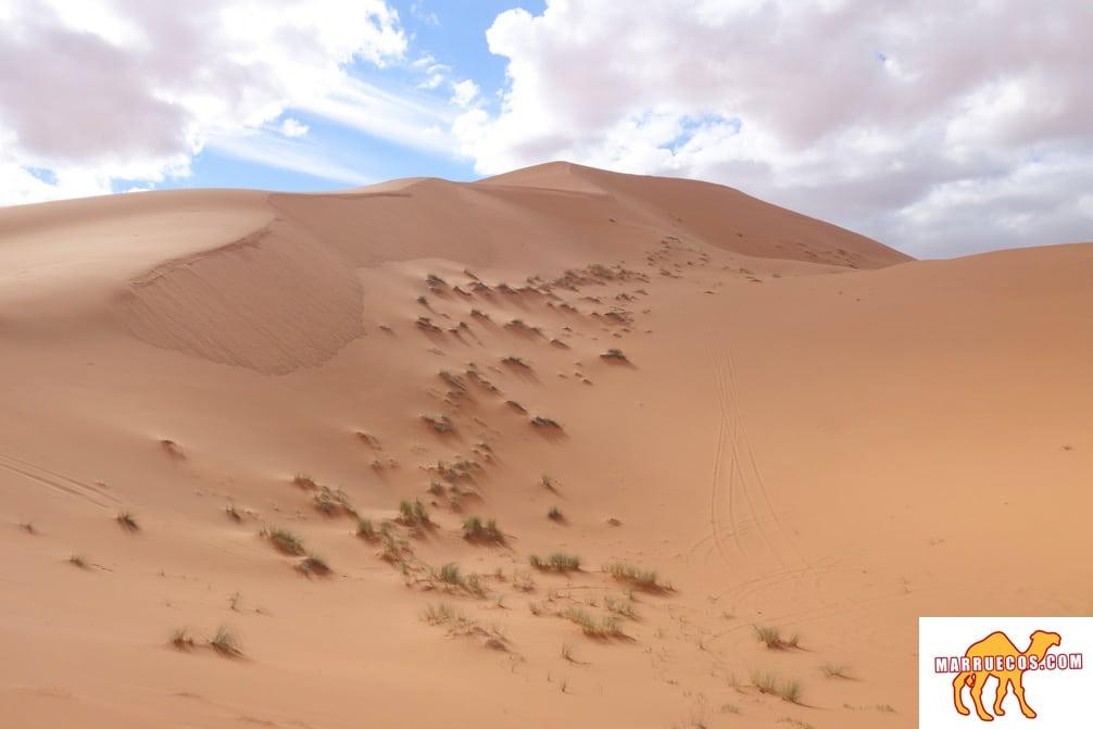 El Momento Más Alegre En La Vida Humana Es En La Partida Hacia Tierras Desconocidas - Richard Burton