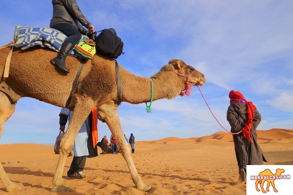 Viajar Hace A Uno Modesto. Ves El Lugar Pequeño Que Ocupas En El Mundo