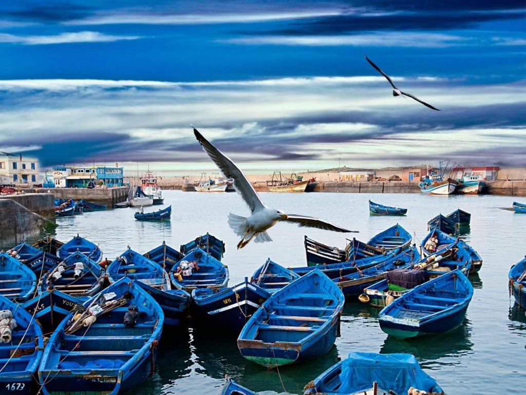 Circuit Marrakech et Essaouira » 5 jours/4 nuits à partir de 331€