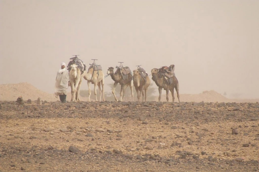 Circuit Le Maroc » 12 jours / 11 nuits à partir de 835€