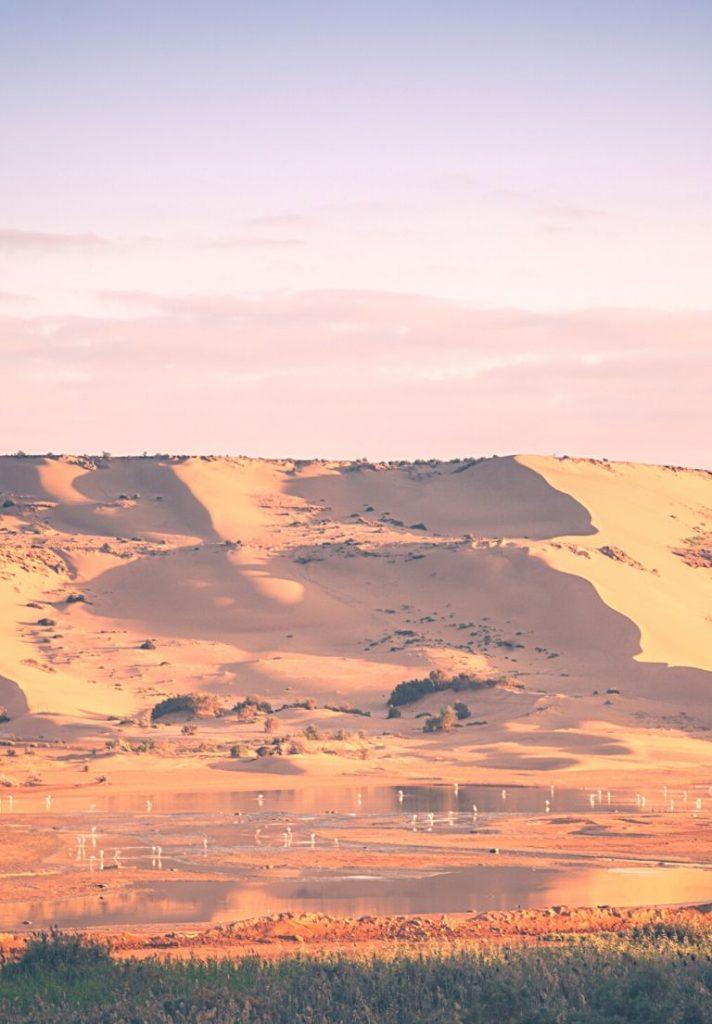 Clima de El Aaiun Marruecos
