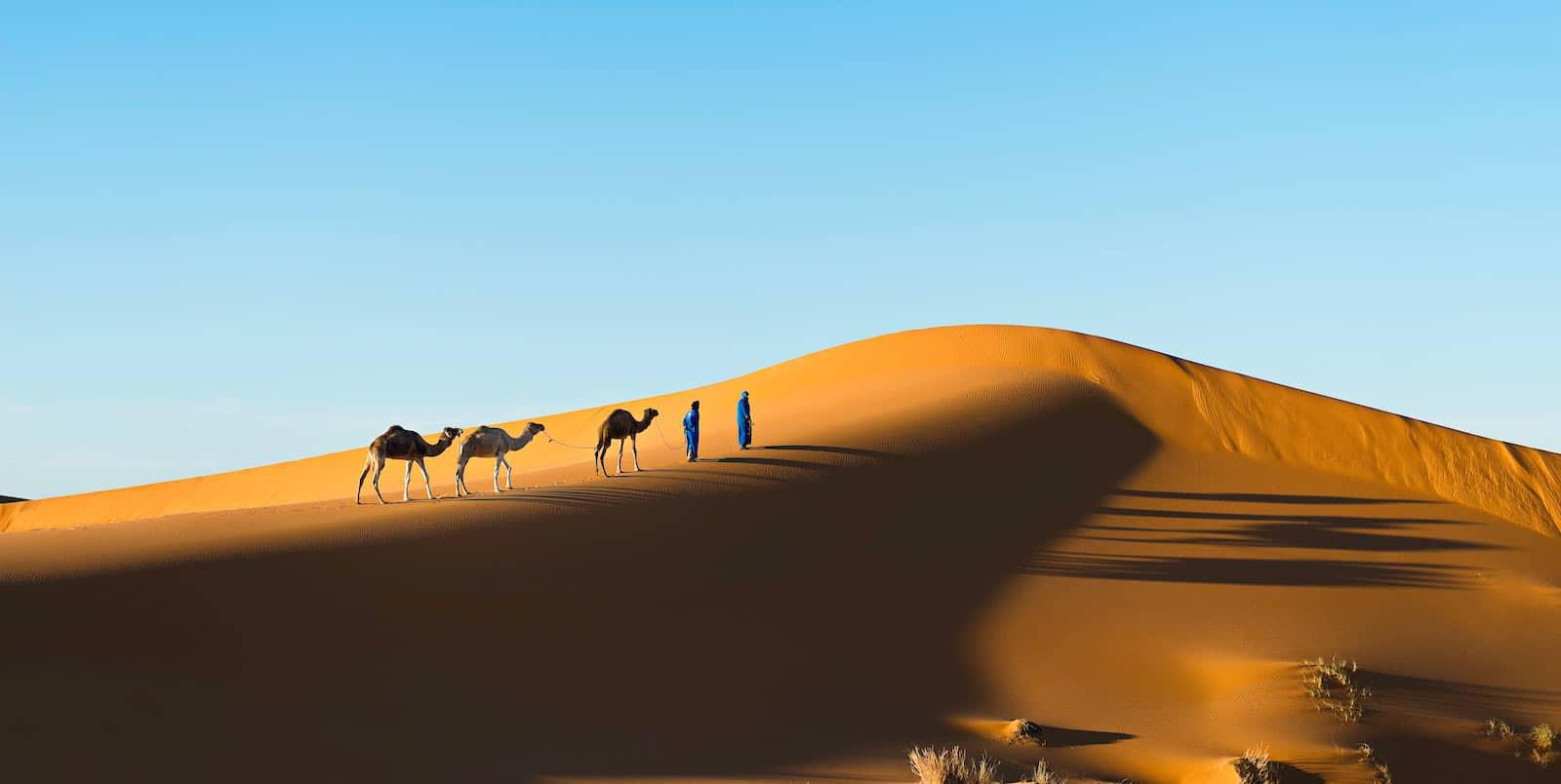 Rutas Y Viajes Especialmente Organizados En Marruecos Para Ti.