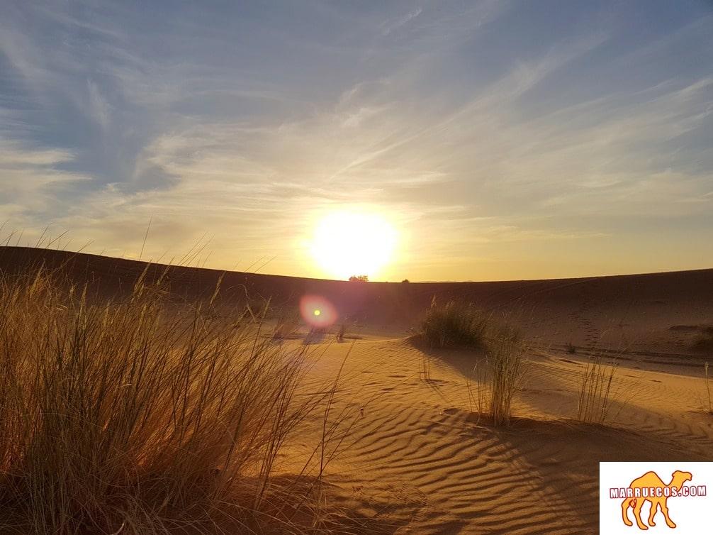 El Que Está Acostumbrado A Viajar, Sabe Que Siempre Es Necesario Partir Algún Día - Paulo Coelho