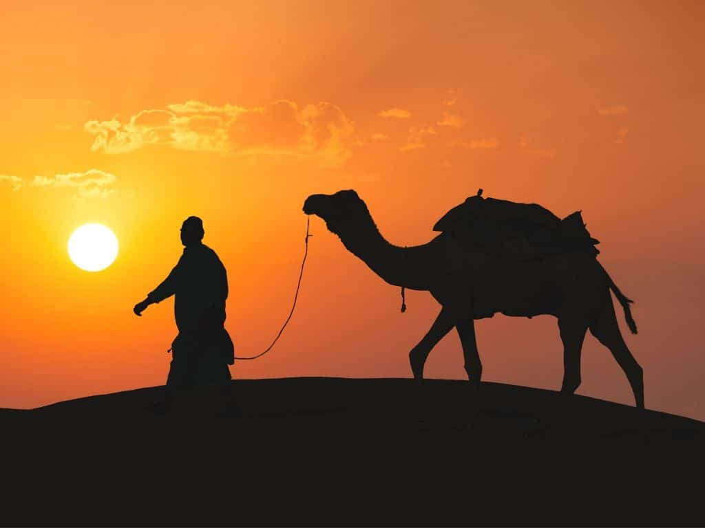 Excursion al desierto desde Marrakech