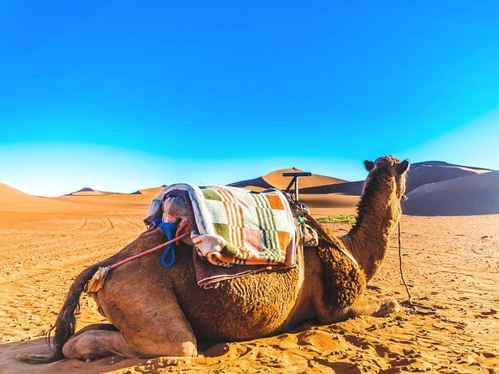Excursiones desde Tanger en Marruecos