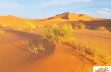 Más importante que el viaje en sí es lo que queda en el espíritu del viajero - Miguel de la Quadra-Salcedo