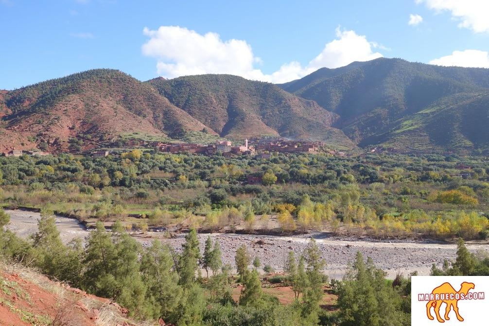 Un Viaje De Mil Millas Comienza Con El Primer Paso - Lao-Tsé