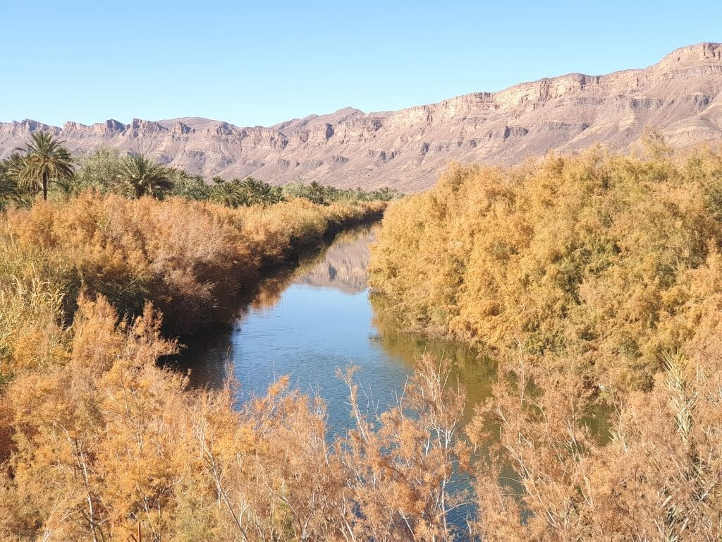 Valle del Draa Marruecos