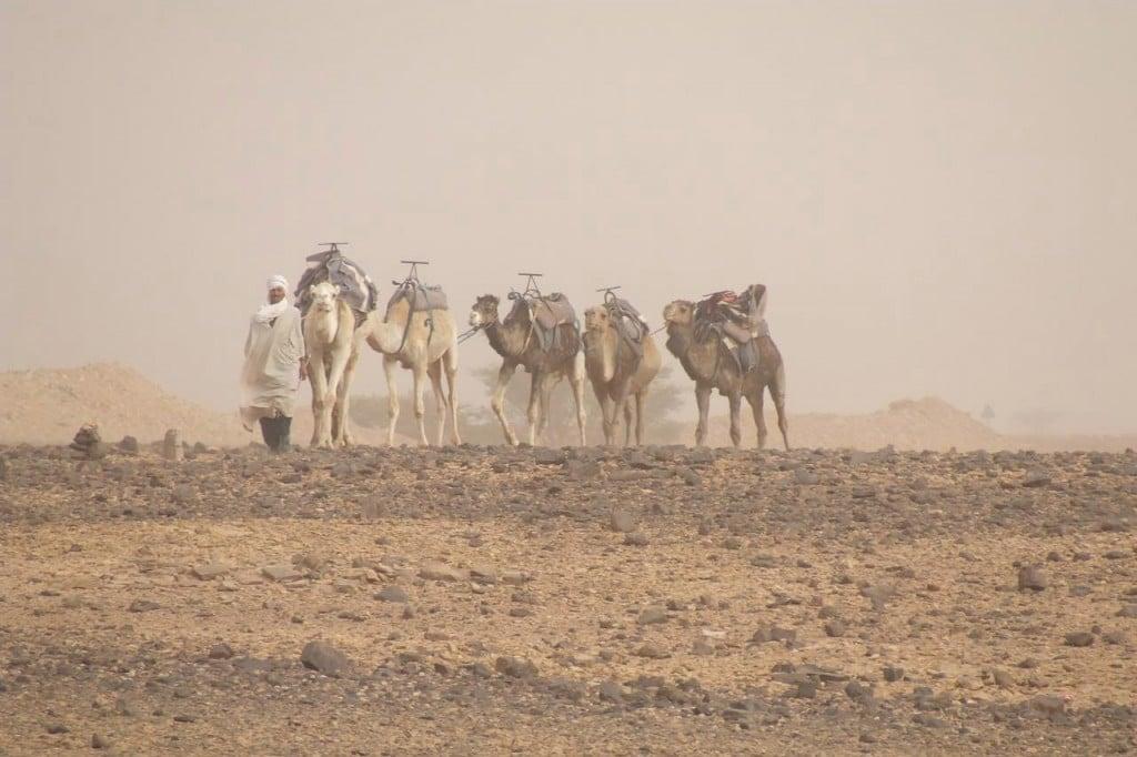 Ruta Mucho de Marruecos » 12 días / 11 noches desde 835€